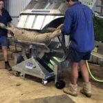 Large sheep loader