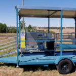 Sheep handling trailer with roof and shades