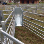 Sheep yard gates and panels
