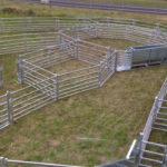 Sheep yards Australia