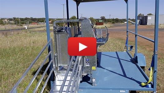 Sheep handling trailer