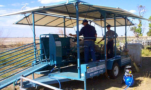 mobile sheep crutching trailer